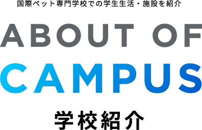 ABOUT OF CAMPUS 学校紹介